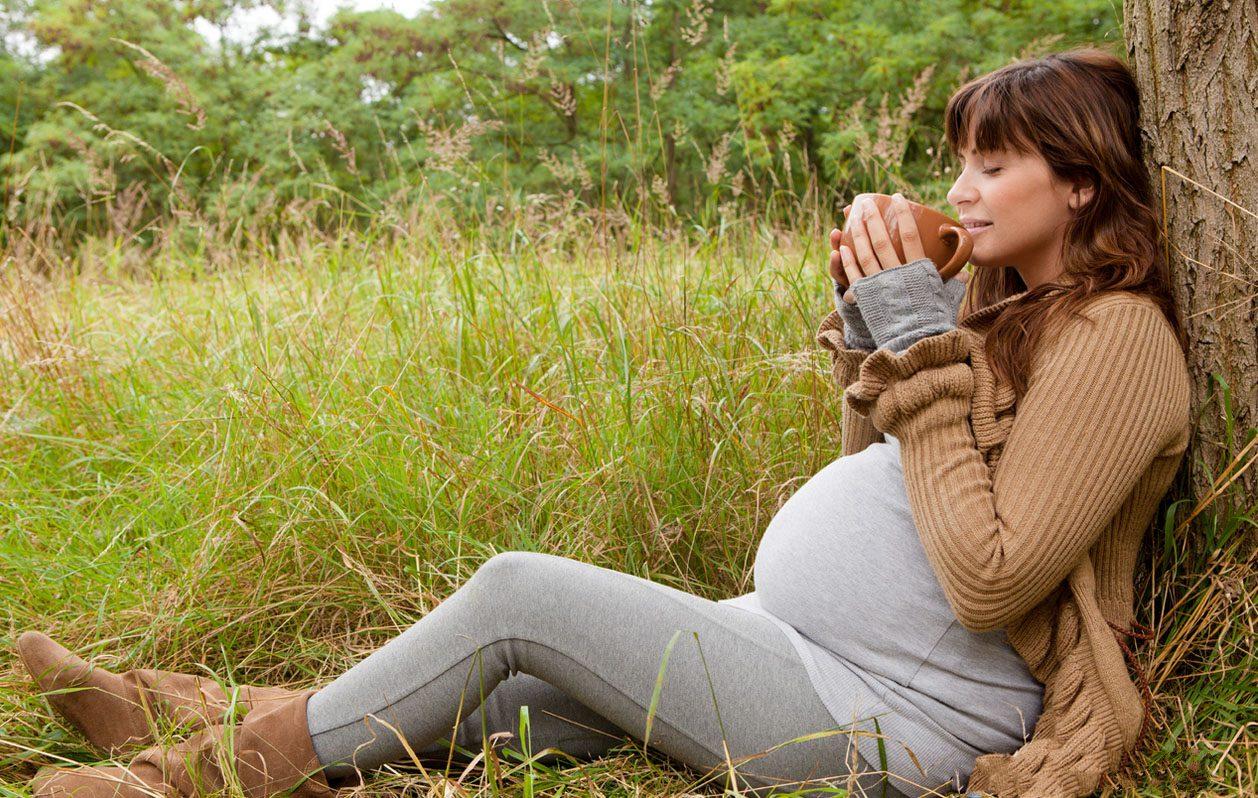 Можно ли беременным пить чай, и какой?