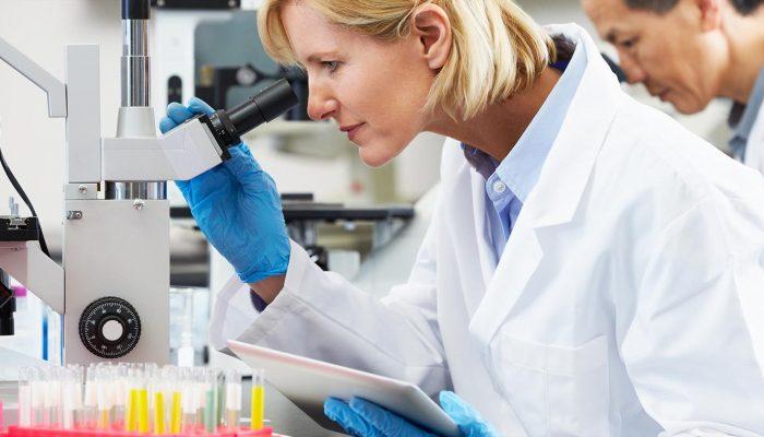 Что такое гистология в гинекологии