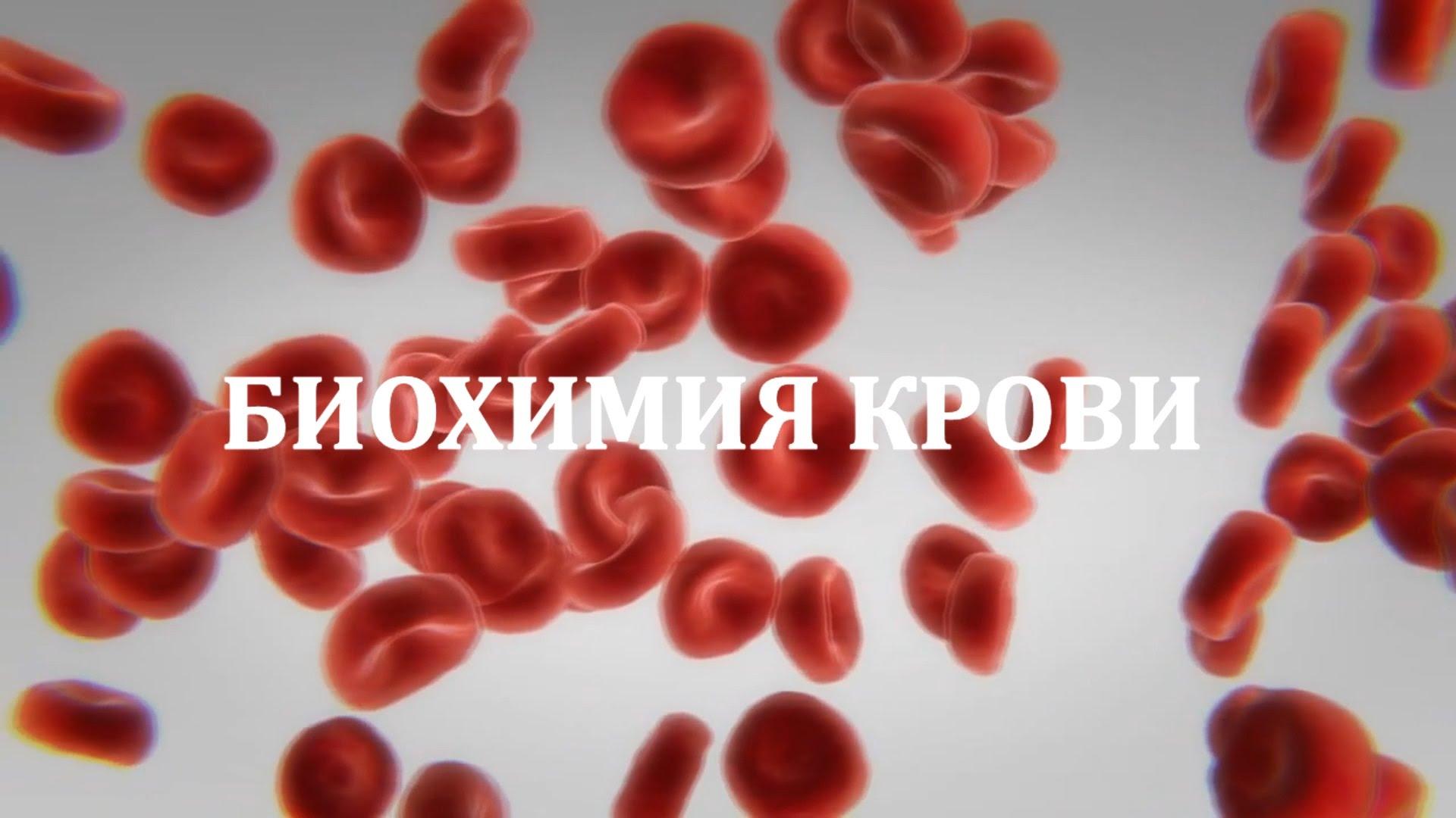 Биохимический анализ крови при беременности: расшифровка