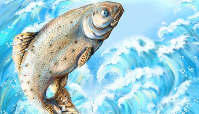 Снится рыба женщине к беременности